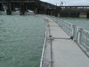 神通川第二ダム 網場(北陸電力)